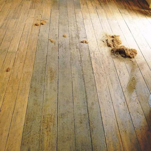 Empresa de raspagem de piso de madeira